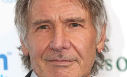 """Harrison Ford Expected to Make """"Full Recovery"""" After Plane Crash"""