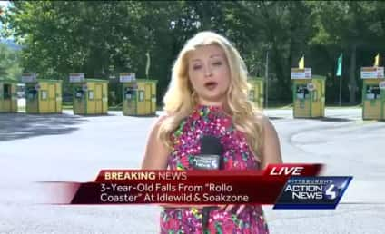 3-Year-Old Falls From Roller Coaster, Rushed To Hospital