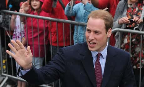 Prince William Waving