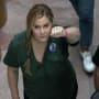 Amy Schumer Arrest Photo
