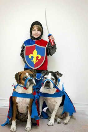 Knight Pet Banana Dog Toy