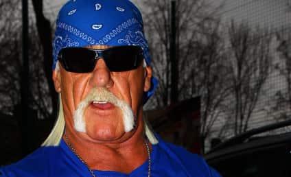 Hulk Hogan Turns to FBI for Sex Tape Assistance