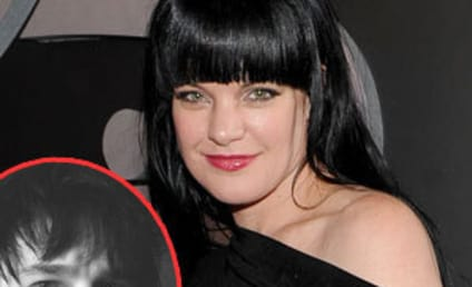 "Francis ""Coyote"" Shivers, Ex-Husband of Pauley Perrette, Arrested For Violating Restraining Order"