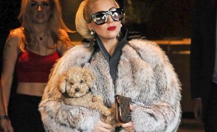"PETA Slams ""Turncoat"" Lady Gaga Over Furry Pics"