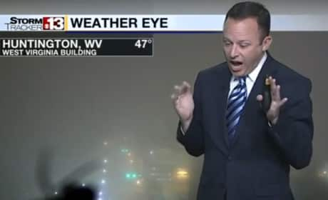 Weatherman Sees Spider on Air, Flips the EFF Out