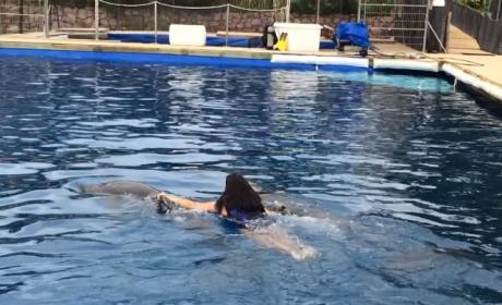 Kim Kardashian Rides Dolphin