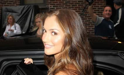 Celebrity Hair Affair: Ali Larter vs. Minka Kelly