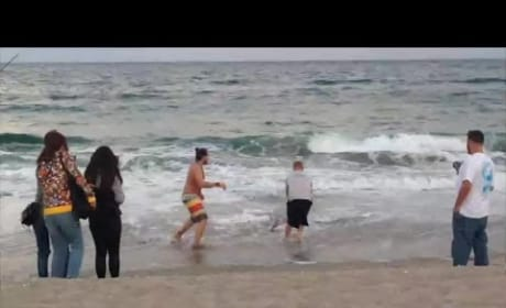 Florida Man Pulls Shark Out of the Sea for a Selfie