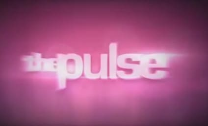 The Pulse: American Idol Top 11 Edition