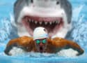 Michael Phelps vs Shark: Twitter Responds with Rage, Laughter