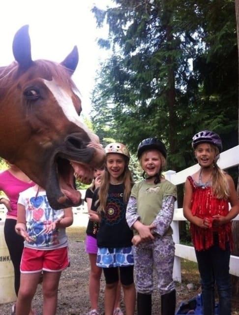 Girls Photobombed by Horse