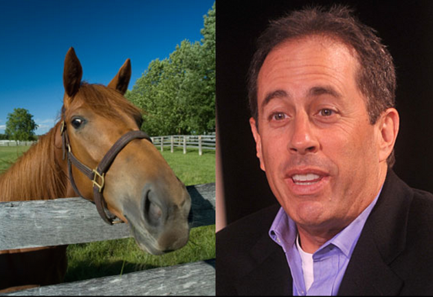 11 Celebrities Who Look Like Horses The Hollywood Gossip