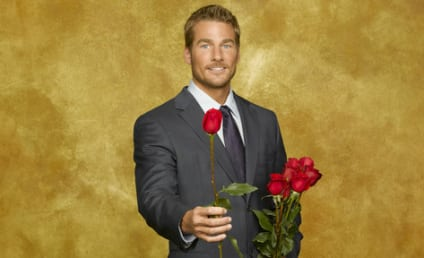 The Bachelor Spoilers 2011: Cast, Hometown Dates, Scandals, Future Mrs. Brad Womack Revealed!