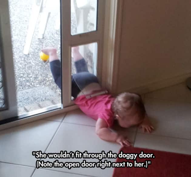 Pet Door Fail