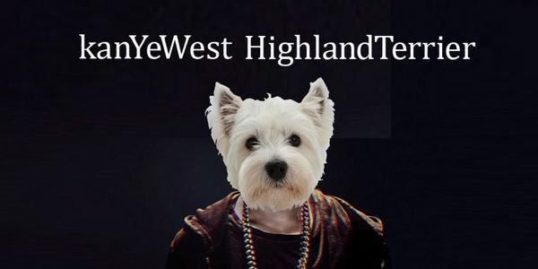 Kanye West Highland Terrier