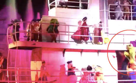 Dopey Wipes Out Aboard Disney Boat Show