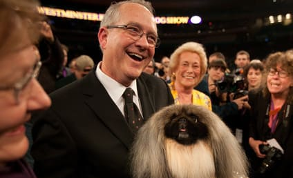 Malachy the Pekingese Wins Best in Show!