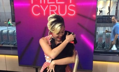 Miley Cyrus Cuddles The Today Show Puppy