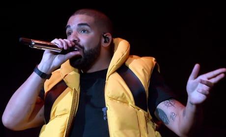 Drake in a Vest