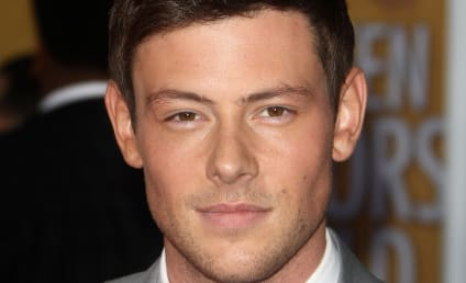 Glee Source: We Tried to Save Cory Monteith