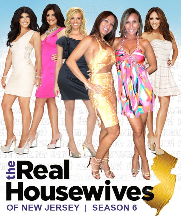 The Real Housewives of New Jersey Season 6 Cast Photo