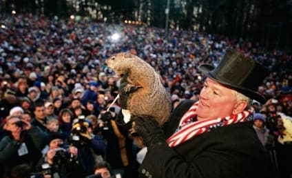 Punxsutawney Phil: Will Groundhog Day Weather Prognosticator Get it Right This Year?