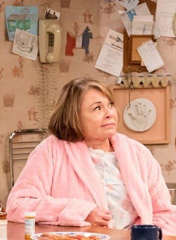 Roseanne on Roseanne