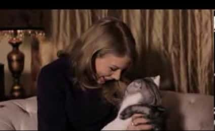 "Taylor Swift ""For Your Consideration"" ACM Video Pokes Fun at Cat-Loving Self"