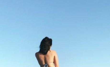 Ariel Winter Twerks in a Bikini