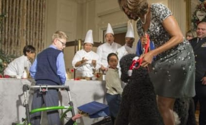 Sunny Obama Takes Down Toddler, Becomes Center of Comedy Universe