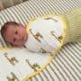 Sonny Sanford Rosenman, Whitney Port's Baby
