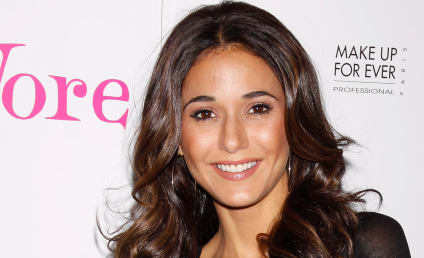 Emmanuelle Chriqui: The Most Desirable Woman in the World?