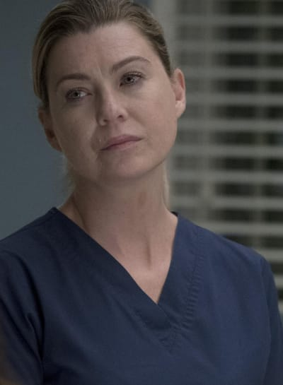 Ellen Pompeo on Grey's Anatomy Season 14