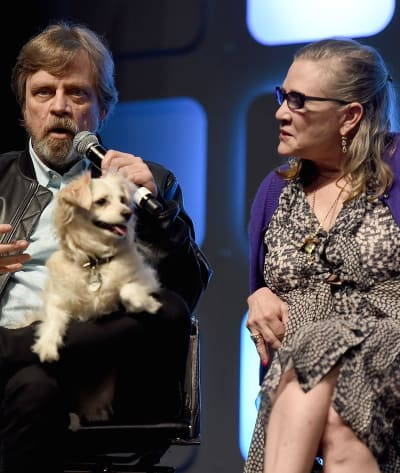 Mark Hamill with Carrie Fisher