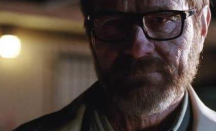 Breaking Bad Finale: A Proper Goodbye?