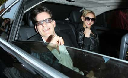 Brooke Mueller and Charlie Sheen: Twins on the Way!