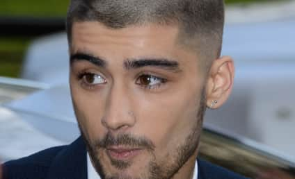 Zayn Malik Thanks One Direction, Looks Forward to Future