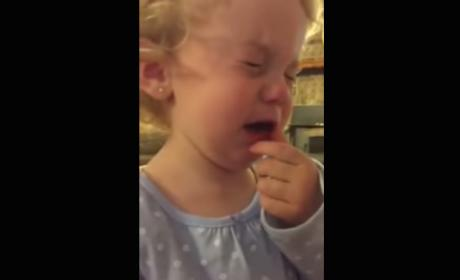 2-Year Old is Devastated When Told Doesn't Have a Boyfriend