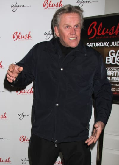 Gary Busey Pic
