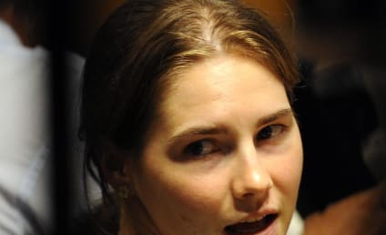 Amanda Knox Shocker: Raffaele Solecito Retracts Alibi on Eve of Trial