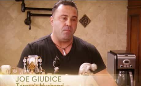 Teresa Giudice vs. Joe Giudice: See Their Fake Fight!