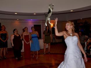 Bride Throwing Cat: Meme 3
