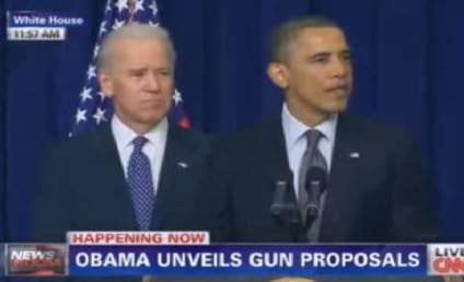 Obama Gun Control Plan: Measures Proposed, 23 Executive Actions Taken