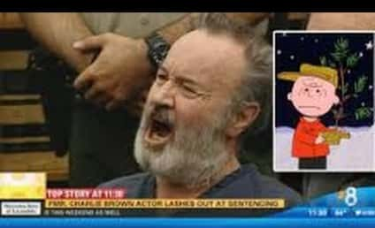 Voice of Charlie Brown FLIPS OUT in Court: Watch!