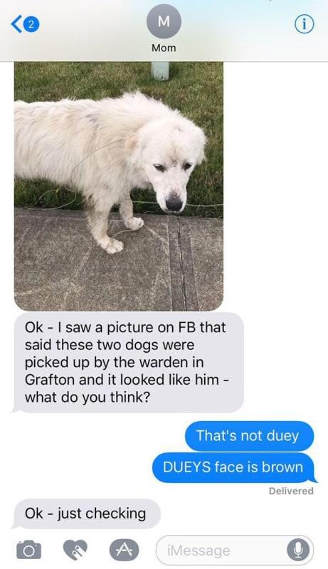 Ummm... Mom?