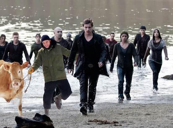 Robert Pattinson and Cow Invade Twilight