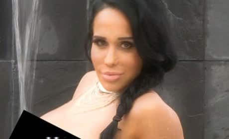 Nadya Suleman Topless