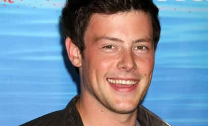 Cory Monteith or Zac Efron: Who'd You Rather ...