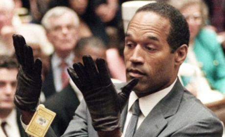 O.J. Simpson Trial: The Evidence