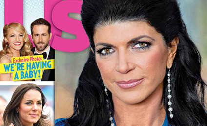 """Teresa Giudice Labels Jail Sentence a """"Life Lesson,"""" Also Destroyed Her Family"""